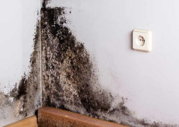 Why Cavity Wall Claims Are Suddenly A Nationwide Issue